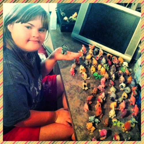 hillarycalhoun:  Kelso's Littlest Pet Shop collection is getting a little out of control. (Taken with Instagram)