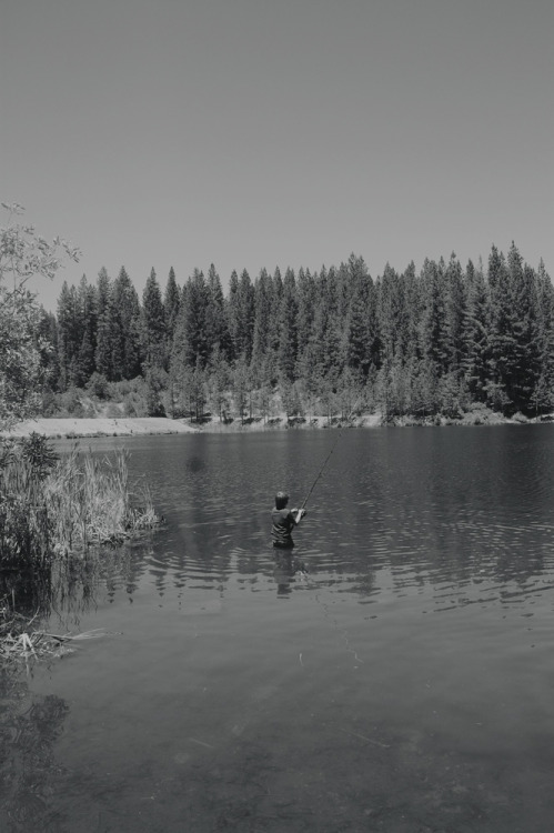 Fishing In The Lake - July, 2012