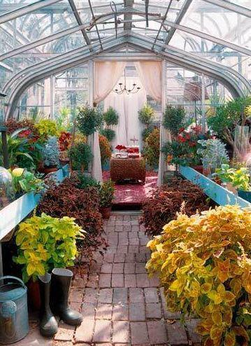 Now this is a greenhouse