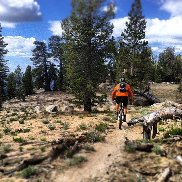 A beautiful day for Tahoe singletrack.  #mtb  (Taken with Instagram)