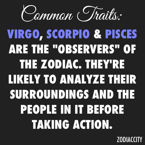 glassleafhouse:  As a Scorpio this is absolutely true.
