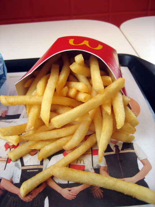 luxury-shit-malik:  sometimesineedaplacetohide:  everyone needs fries on their blog im sorry.  need right now
