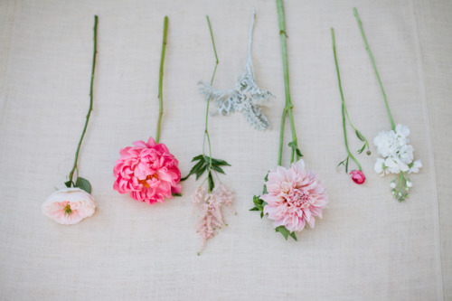 Pretty summer blooms photographed by Marvelous Things Photography!
