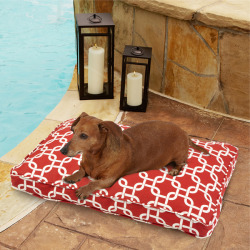 | Pets | Marketplace : Overstock Mozaic Indoor/Outdoor Chain link Red Pet Bed This indoor/outdoor pet bed has a zippered removable cover for easy cleaning. The fill is shredded foam giving your pet a nice soft bed to sleep on.