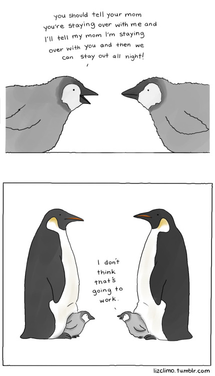 fat-birds:  lizclimo:  how to stay out all night   I love this webcomic! So cute, instafollow~ :)