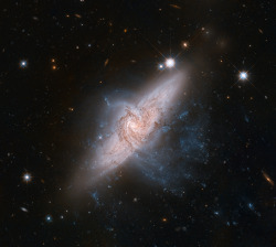 Chance Alignment Between Galaxies Mimics a Cosmic Collision  NASA's Hubble Space Telescope shows a rare view of a pair of overlapping galaxies, called NGC 3314. The two galaxies look as if they are colliding, but they are actually separated by tens of millions of light-years, or about ten times the distance between our Milky Way and the neighboring Andromeda galaxy. The chance alignment of the two galaxies, as seen from Earth, gives a unique look at the silhouetted spiral arms in the closer face-on spiral, NGC 3314A.