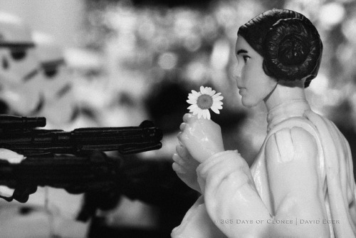 "29/52 | Flower Child, Death Star Protest on Flickr. 52 Weeks of Star Wars  is a weekly photo project starring various characters from the Star Wars franchise. This photo project is a continuation of sorts to my original series; 365 Days of Clones, specially my Cloned Photos mini-series. Today marks the Twentieth Ninth creation in this year long adventure. As the title suggests; 52 Weeks of Star Wars, one new photo will be taken, edited and added to the running total every Sunday. The twist is that all the images will be a recreation of sorts of a previous image. Some; like today, will be a recreation from a famous image of the 20th century, while others will be movie posters or album covers. There may even be the odd recreation of a painting! ""Flower Child, Death Star Protest"" is my recreation of Marc Riboud's iconic image of the 1967 Vietnam War Protests at the Pentagon.  Some of you may be wondering why I chose to create a Cloned Photo base upon this iconic image. Jan Rose Kasmir; the flower child in the photo, had a lot of guts to stand up for what she believed in. Similarly; Princess Leia stood up for what she believed in, even in the presence of Darth Vader. I have also always liked the juxtaposition of the armed forces and the flower child and thought that the juxtaposition of Stormtroopers and Princess Leia would be equally intriguing.  This is another image that I attempted to photograph last October on the anniversary of the original shot, but was not happy with it, so I did something else. I am much more satisfied with this version.  Enjoy!  Subscribe to 52 Weeks of Star Wars RSS 