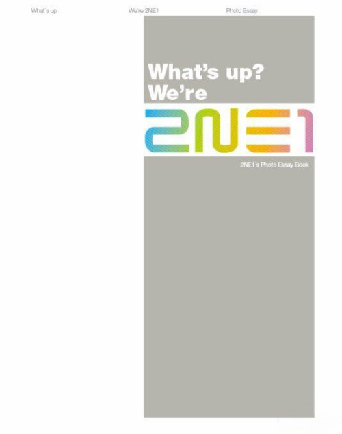 2NE1 Photo Essay Book - What's Up? We're 2NE1 : $45.00314 pages (Photos + Member Writings in English, Korean and Japanese)