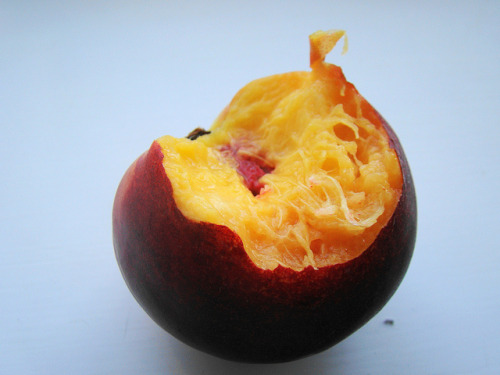 veganfeast:  Peachy on Flickr. Eat