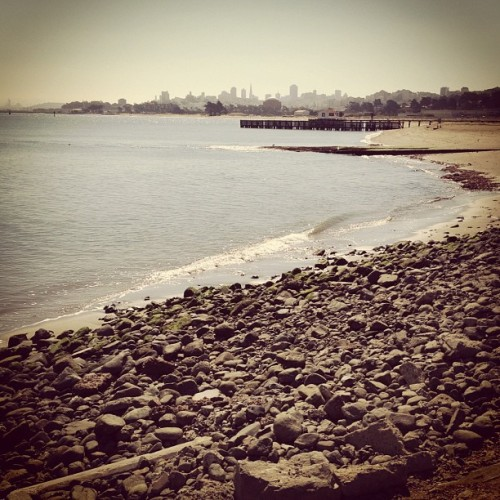 San Francisco skyline. by eugkuo http://instagr.am/p/NY1MATCovf/