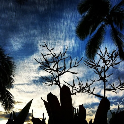 🌴☁🌀 (Taken with Instagram)