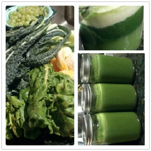 #SEAofGREEN / The meanest of the meaN - #kale #chard #celery #broccoli #cucumber #grapes #orange #lemon. #meangreen #juicing #gogreen #fruits #veggies #juicehead #juiceduP #nofilter (Taken with Instagram)