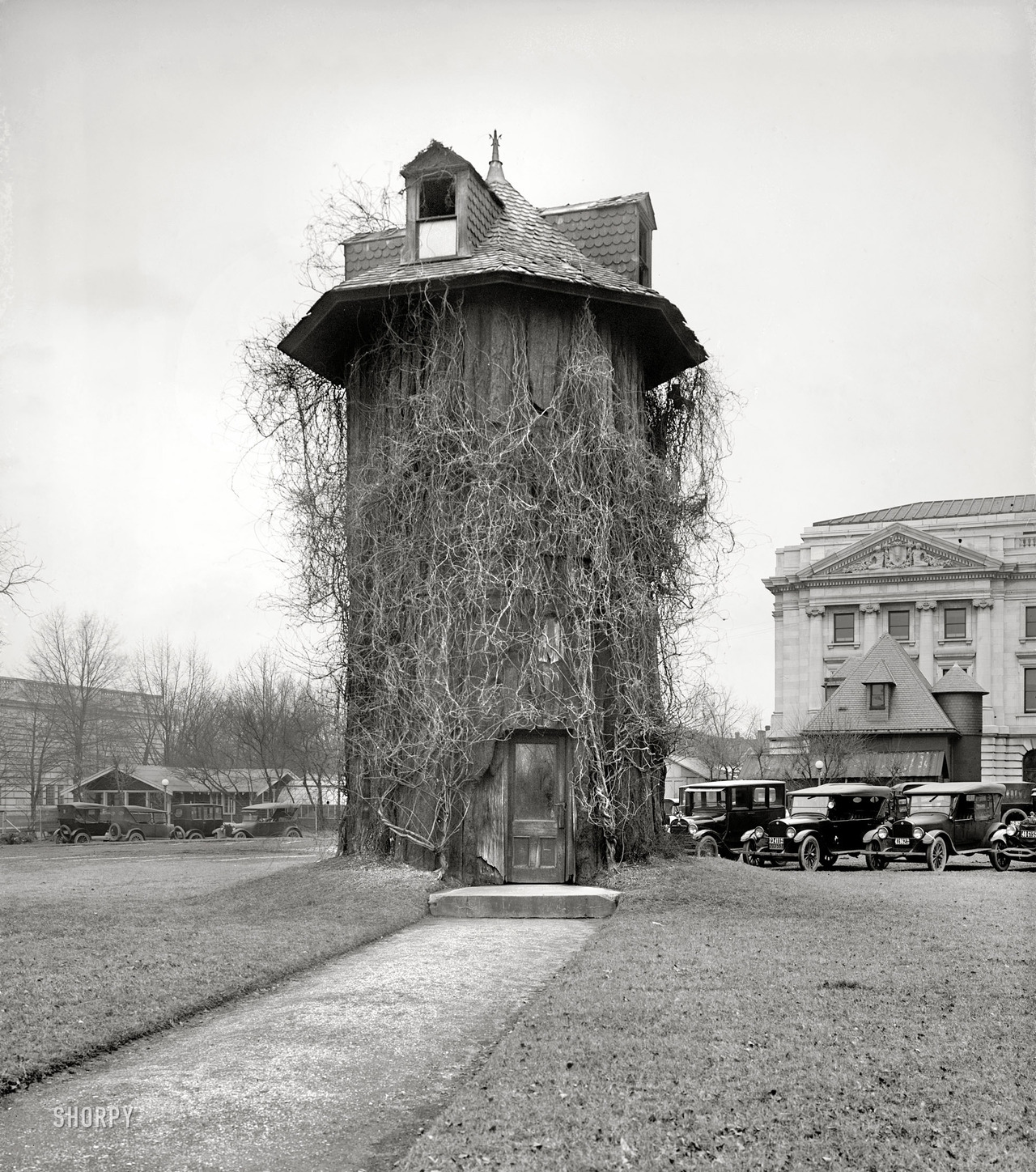 "bassman5911:  Tree House: 1923 Washington, D.C., 1923. All it says here is ""Dept. of Agriculture."" Back when the place was run by the Keebler Elves. National Photo Company."