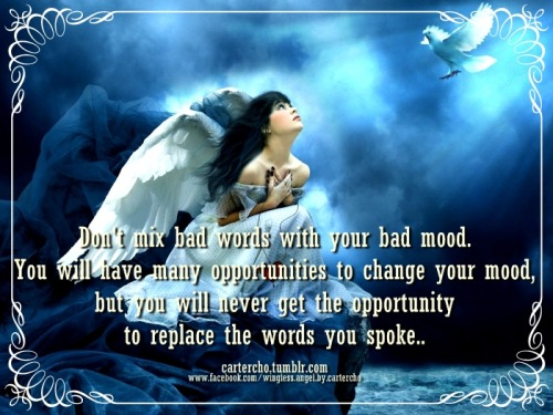 Don't mix bad words with your bad mood. You will have many opportunities to change your mood, but you will never get the opportunity to replace the words you spoke
