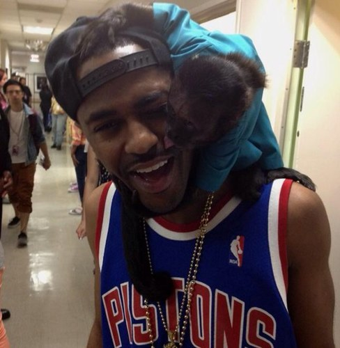 alwayslovetaternuts:  Big Sean's twitter avi is so cute haha.
