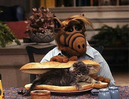 Oh Alf, you forgot the CATsup! (heeheehee)