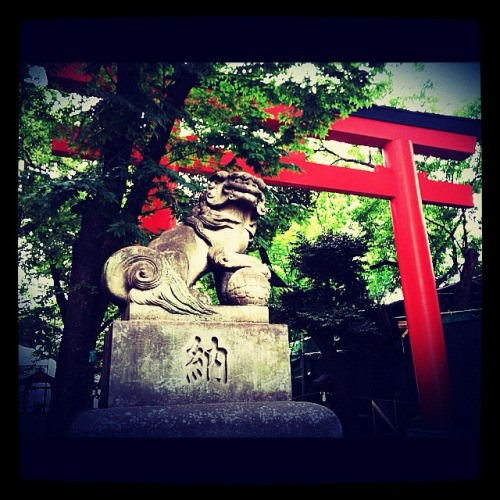 Shinjuku Shrine in summer.