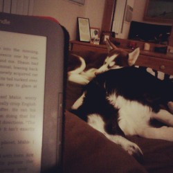 While I was reading, the girlies passes out for the night. They look like loving sisters here<3 - @chrissylynmc- #webstagram