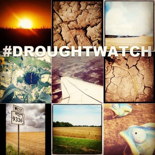 NBC News Hashtag Collection: #DroughtWatch Instagram users shared the effects of the worst drought in over 50 years in their area this weekend. Thank you for sharing your photos with us. Congratulations to @bek_, @gabbi_m3, @heyitsalwallick, @stewpy, @benmorgram, @jmurphpix, @suzynewhouse, @demelomarcelo and @acassler. We will announce a new Hashtag Collection Thursday afternoon.