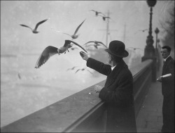 A man feeding seagulls on the Thames Embankment London, England, 1929. Photo by Fox Photos/Getty Images