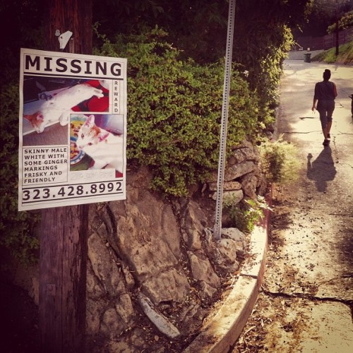 Missing  (Taken with Instagram)