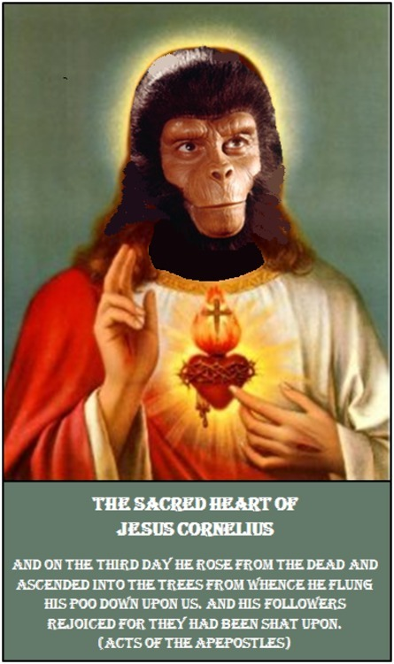 Sacred Heart of J.C.