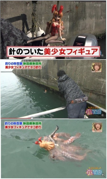 JAPANESE KNOW NO OTHER WAY TO FISH THINGS WITH TENTACLES