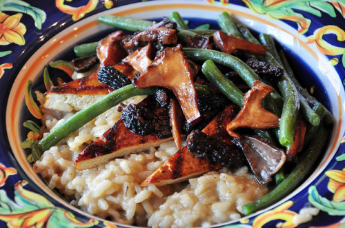 tofu666:  Three Mushroom Risotto (w/recipe)