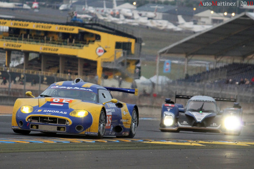 The greatest show on Earth Starring: Spyker C8 GT2-R & Peugeot 908 HDi (by Automartinez)