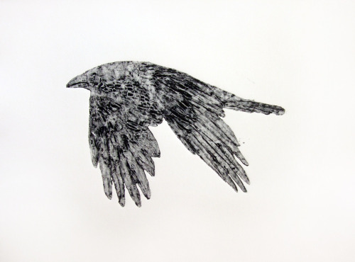 camillataylor:  Raven Collagraph by Camilla Tayor