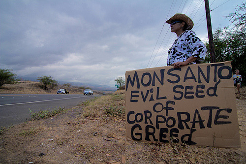 "Monsanto sued for underpaying workersJuly 23, 2012 It's back to court for biotech giants Monsanto. This time America's largest agriculture corporation is being sued by a group of farmers who say they were promised free housing but instead were charged thousands and poisoned by pesticides. Seven migrant workers from the state of Texas are suing Monsanto after they say the massive biotech corporation failed to keep their promise. The plaintiffs argue that they were promised free housing and kitchen access for their families in exchange for working on a hybrid corn seed project in the state of Indiana, but instead were milked out of their money and exposed to dangerous chemicals. Jose Cardenas, the lead plaintiff in the case, is going after Monsanto and its recruiter, Milo Inc., as well as that company's president. Cardenas insists that Milo Inc. promised the plaintiffs $80 for each acre the farmers detasseled and would be additionally compensated with housing arrangements. According to his complaint, however, the pay that was signed over was less than minimum wage when divided among the crew members. Courthouse News Service reports that money problems weren't all the farmers were poised with. ""The motel housing did not comply with substantive federal and state safety and health standards applicable to agricultural labor housing,"" the complaint reads.Additionally, instead of complimentary accommodations they were forced to spend $300 per room while on the job. And the kitchen? ""[T]he kitchen facility provided by the defendants – a school bus in which about three to four stoves and two refrigerators had been installed – was substandard."" ""Two or more of the working plaintiffs suffered illness or injuries from suspected pesticide exposure while working for defendants,"" the farmers add. Attorney Kathryn Blair Craddock with Texas Rio Grande Legal Aid is representing the group of seven workers whom are seeking damages under the Agricultural Worker Protection Act, as well as unpaid wages as promised through the Fair Labor Standards Act. Agriculturalists across America have previously tried to take Monsanto to court over charges stemming from their lab-made corn GMOs, but that case was a bit different. Over 2,000 farmers have petitioned the US government to more thoroughly investigate the impact a genetically modified corn crop from Monsanto will have on the country. As RT reported before, the biotech company wants to plant a corn variant across America's Midwest that will be resistant to a powerful pesticide produced with 2,4-D, the same compound crucial to the make-up of the notorious Vietnam War-era killer Agent Orange. If approved, the new corn will be able to thrive as farmers douse their fields in the chemical, killing off unwanted weeds in the process while at the same time subjecting Americans to a pesticide linked to causing cancer. Source"