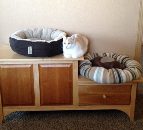 tastefullyoffensive:  Cat Logic  [via]
