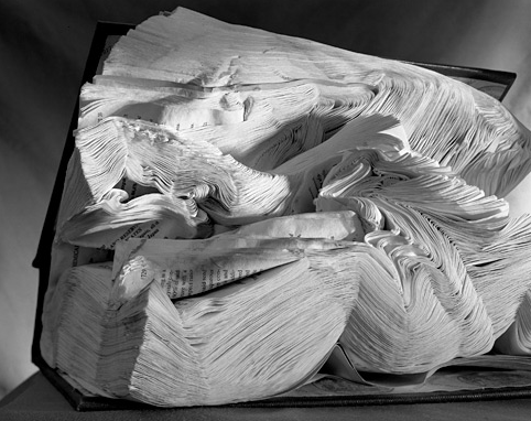 teachingliteracy:  mythologyofblue: Abelardo Morell, Book Damaged by Water, 2001