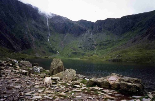 Llyn Idwal is truly amazing, no picture can justify this place :D
