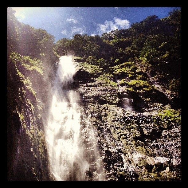 Waimoku Falls. #maui #hawaii #ermahmauri  (Taken with Instagram)