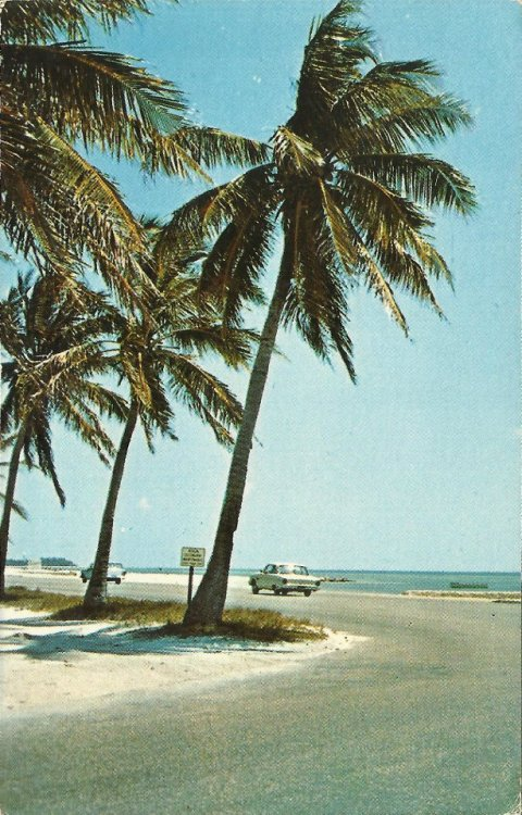 oldflorida:  'Drive South until the road ends' Vintage mid-century photography