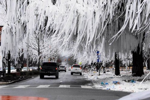 Toomers Corner after Auburns Win over Alabama in 2010. Gotta love some Auburn College Football. War Eagle!