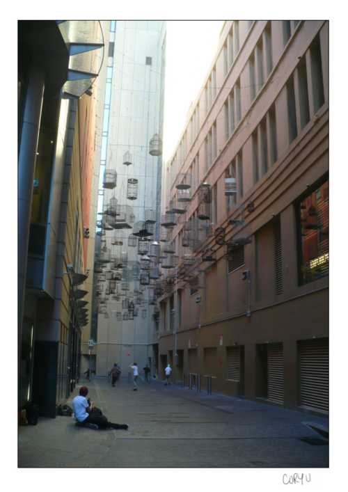 Walking through Sydney, we came across this laneway featuring a now permanent art installation. Angel Place Laneway is decked out in 120 birdcages & commonly labeled birdcage alley. Even cooler, there are speakers set up on either side that when you walk through you can lightly hear the sounds of birds that once lived in the area. It was definitely a hidden gem that I was happy to be shown. NEXT UP: Manly Beach -Cory U