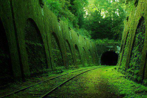 tenebrum:  Abandoned Railroad Tunnel - France