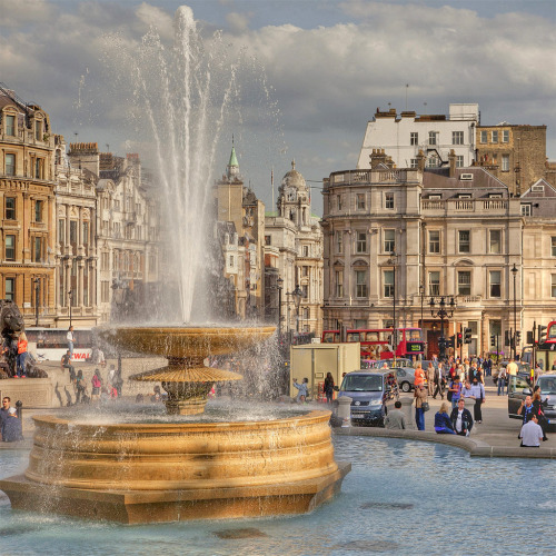 allthingseurope:  Trafalgar Square, London (by alessmile ♥)  This really couldn't be any more beautiful. <3