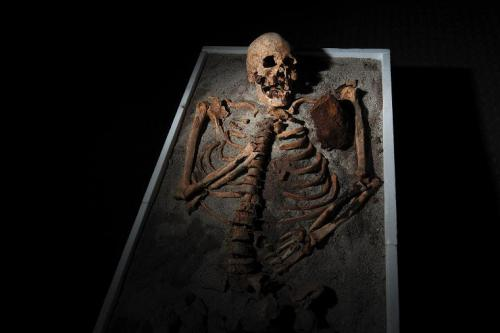 "mediumaevum:  The discovery of a 700-year-old skeleton in Bulgaria—seen at the country's National Museum of History in June—offers evidence that the fear of vampires is far older than Bram Stoker's Dracula. The ""vampire"" was found entombed among church ruins in the Black Sea town of Sozopol (map) earlier in the month. The skeleton had been stabbed in the chest with an iron rod (upper right), which was in the tomb next to the body. In addition, the skeleton's teeth had been pulled. Scholars believe the rod and tooth-pulling were techniques villagers used to prevent dead men from turning into vampires. More on this story"