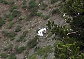 "Man in goat suit seen living among goats in Utah mountains A man spotted dressed in a goat suit among a herd of wild goats in the mountains of northern Utah has wildlife officials worried he could be in danger as hunting season approaches. Phil Douglass of the Utah Division of Wildlife Resources said Friday the person is doing nothing illegal, but he worries the so-called ""goat man"" is unaware of the dangers. ""My very first concern is the person doesn't understand the risks,"" Douglass said. ""Who's to say what could happen."" Douglass said a man hiking Sunday along Ben Lomond peak in the mountains above Ogden, about 40 miles north of Salt Lake City, spotted the person dressed like a goat among a herd of realgoats. The person provided some blurry photographs to Douglass, who said they did not appear to have been altered. Wildlife officials now just want to talk to the man so that he is aware of the dangers. There's no telling what his intentions are, Douglass said, but it is believed he could just be an extreme wildlife enthusiast. ""People do some pretty out there things in the name of enjoying wildlife. But I've never had a report like this,"" Douglass said. ""There's a saying we have among biologists — You don't go far enough, you don't get the data. You go too far, you don't go home. The same is true with some wildlife enthusiasts."""