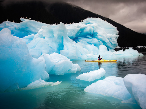 Photos: Alaska's Rustic and Rugged Islands | LeConte Glacier