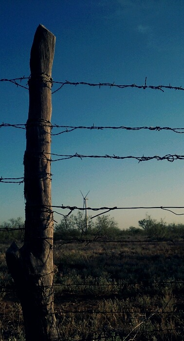 flatlander40photography:  West Texas Fence Line flatlander40 photography