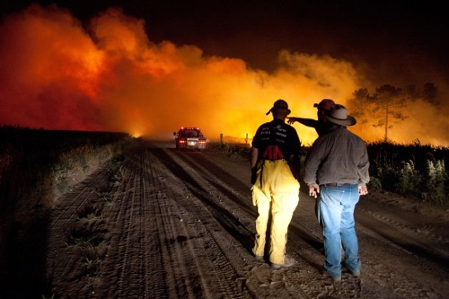 50,000 acres burned in northern Nebraska wildfire TheOmahaChannel.com:Officials say 50,000 acres have been burned in northern Nebraska after lightning sparked a fire. Ten structures have been destroyed, while 70 more are threatened. The Rocky Mountain Incident Management Team hopes to make a big difference Tuesday as it continues fighting the blaze. Photo: Firefighters plan an attack early Tuesday July 24, at the Fairfield Creek fire near Springview, Nebraska. The sprawling fire, sparked Friday by lightning, charred at least 50,000 acres by Monday morning and it wasn't clear how much of the fire had been contained. (Dave Weaver / AP)