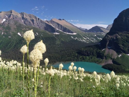 Come and experience Glacier National Park's pristine forests, alpine meadows, rugged mountains, and spectacular lakes. With over 700 miles of trails, Glacier is a hiker's paradise for adventurous visitors seeking wilderness and solitude. Relive the days of old through historic chalets, lodges, transportation, and stories of Native Americans. Explore Glacier National Park and discover what awaits you.Photo: National Park Service