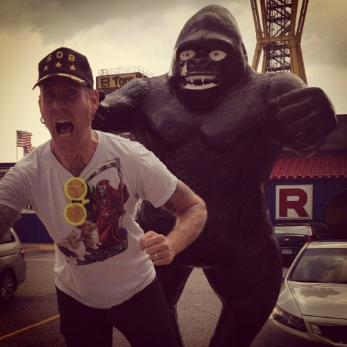 fuckyeahbranndailor:  BIGGER GORILLA  Dear Brann, for better agility and speed, keep your head down while your running from that beast. Within seconds break-neck speeds will take over your breathing…it's okay bud. You'll make it out of that desert…damn place is for the sick and damned anyways. Chin up buddy.