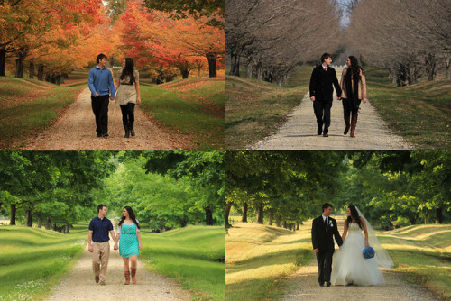 ajinmd:  Four Seasons until the Wedding on Flickr. Four Seasons until the Wedding Wye River, Queenstown, MD