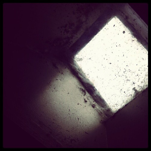 A window (Taken with Instagram)