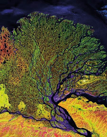 Landsat Turns Forty In 1965, the U.S. Geological Survey proposed the idea of a remote sensing satellite program to gather facts about the natural resources of Earth. In 1970, NASA had permission to build Landsat 1, which was launched forty years ago this week. Since then, the Landsat series of satellites has collected millions of multi-spectral images that make it possible to study the long-term environmental effects of everything from natural coastal erosion to urban sprawl. The image above was taken by Landsat 7, the newest member of the Landsat family. It shows the delta of the Lena River, one of the largest rivers in the world. The Lena Delta Reserve is the most extensive protected wilderness area in Russia. It is an important refuge and breeding grounds for many species of Siberian wildlife. Source.